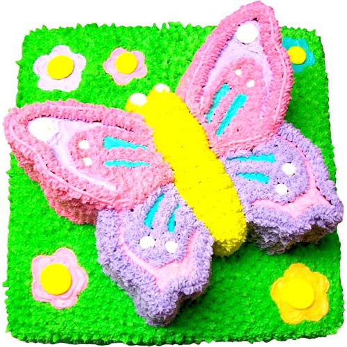 Butterfly-Theme-Cake